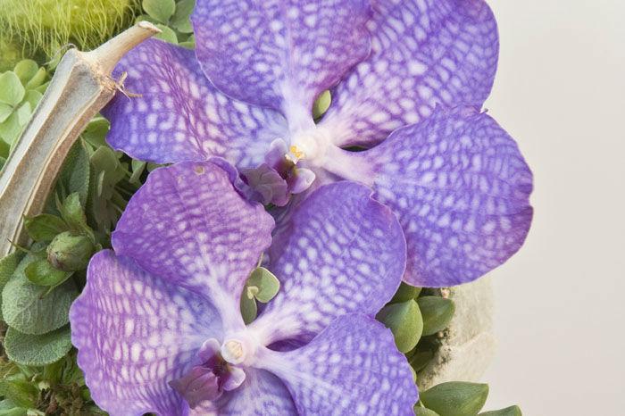 Beispiel: Sträuße und Dekoration, Foto: Blumen Maarsen.