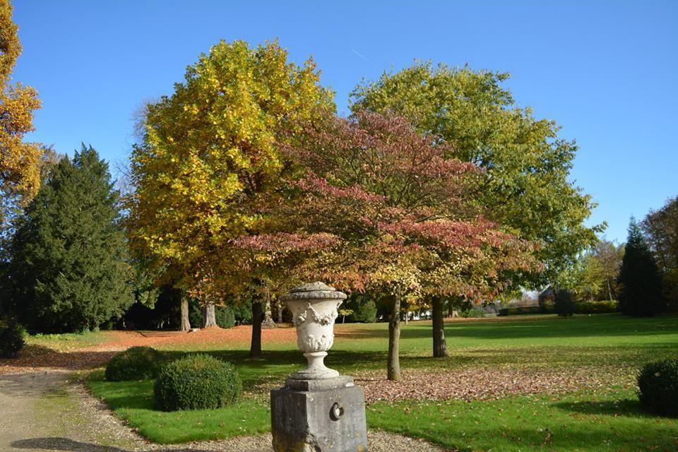 Parc du Château de Montgobert