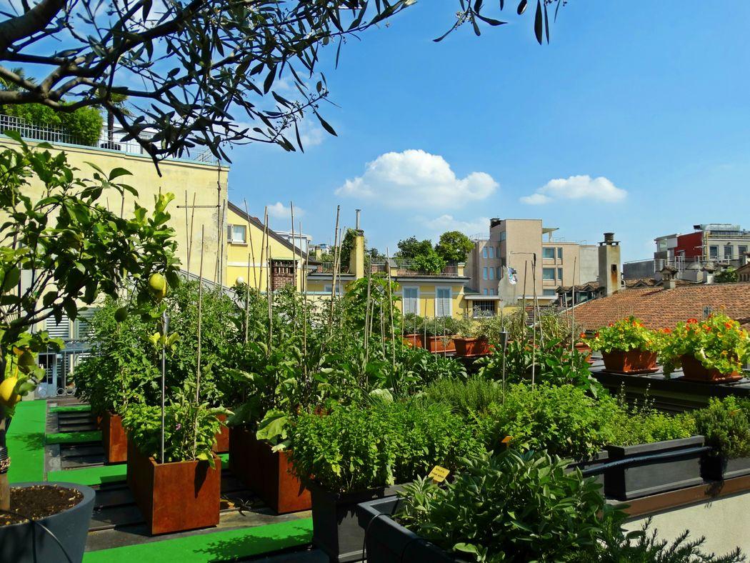 Sky Terrace Milano Scala