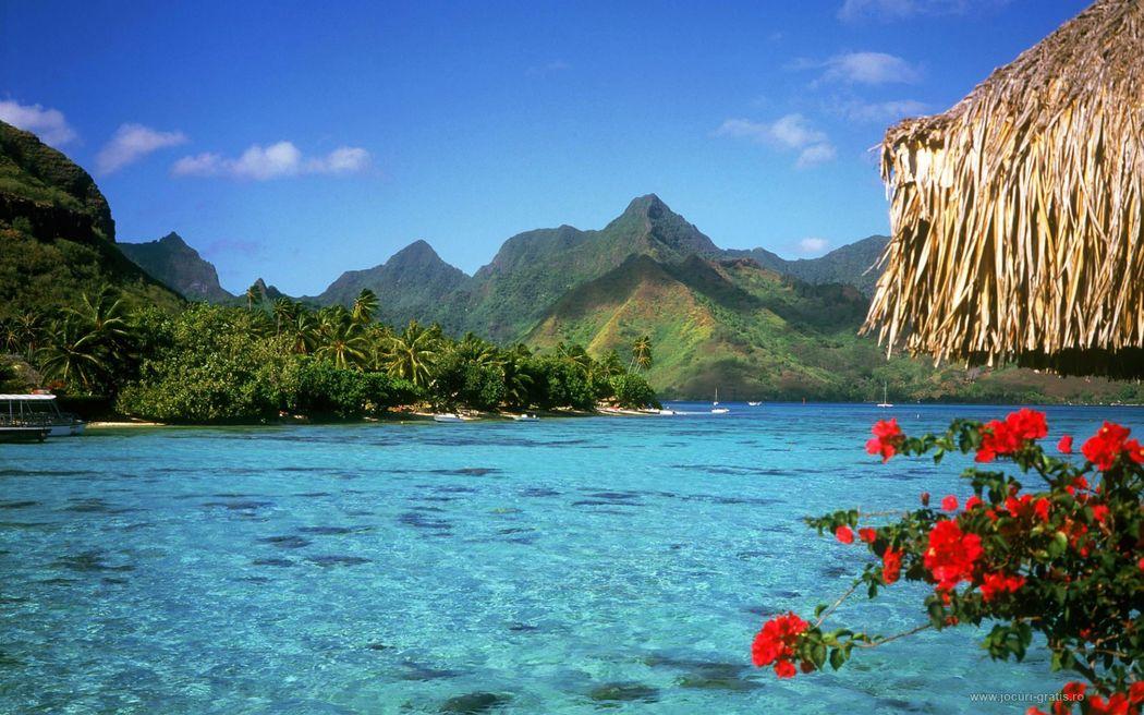 Nueva York - Bahamas 09 días . Precio por persona desde 1585€ . Solicita más informacion
