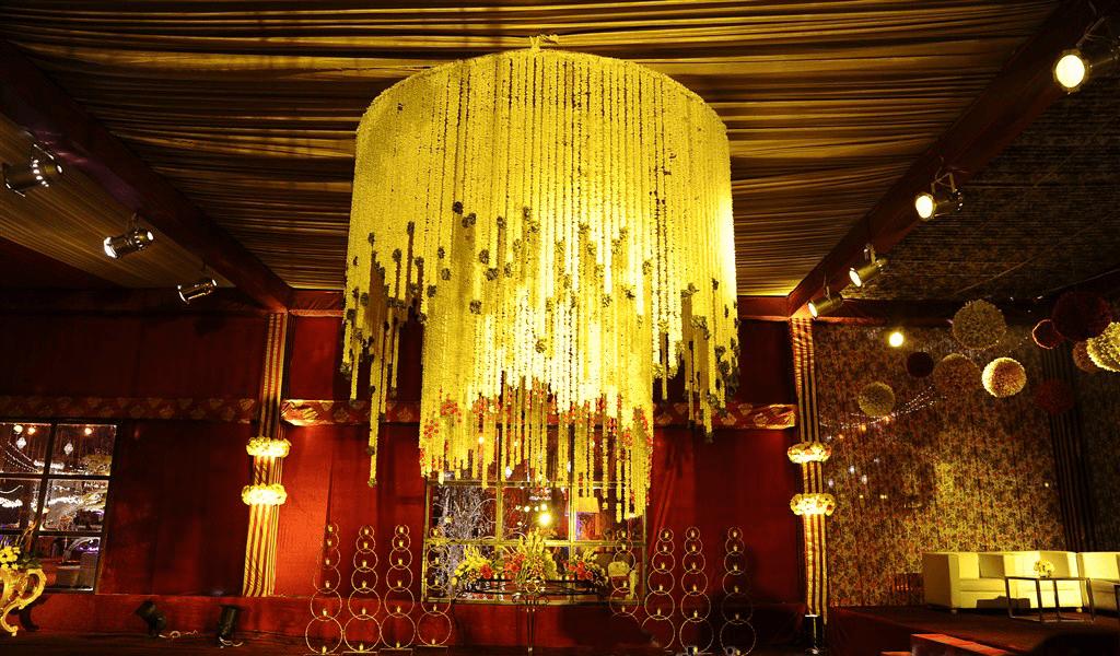 Palms - Krishna