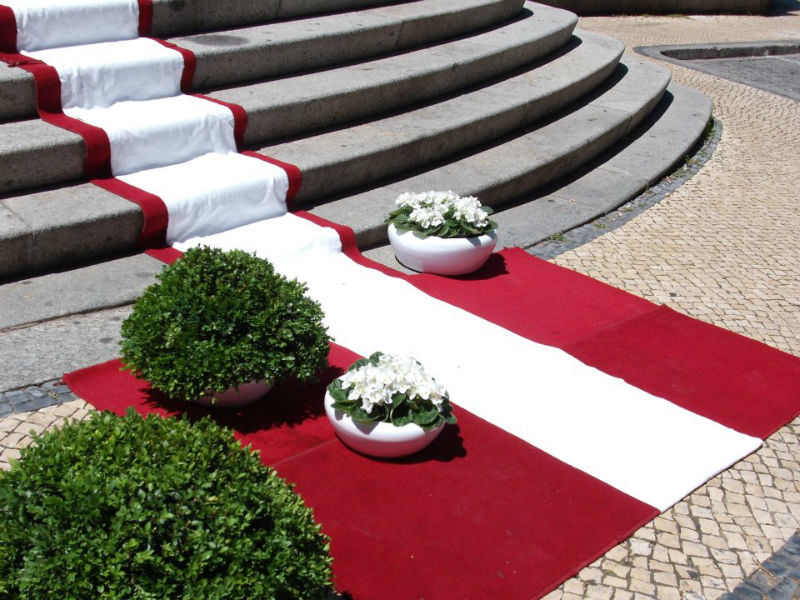 Foto: O Jardim Florista