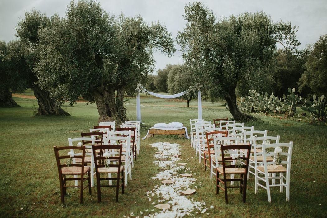 Evedding Events & Wedding