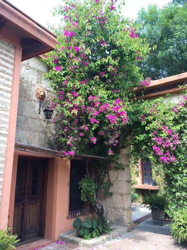 Villa Los Faroles