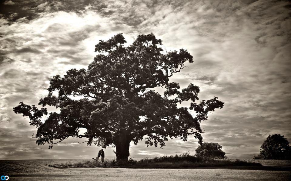 Alex Beckett Photography