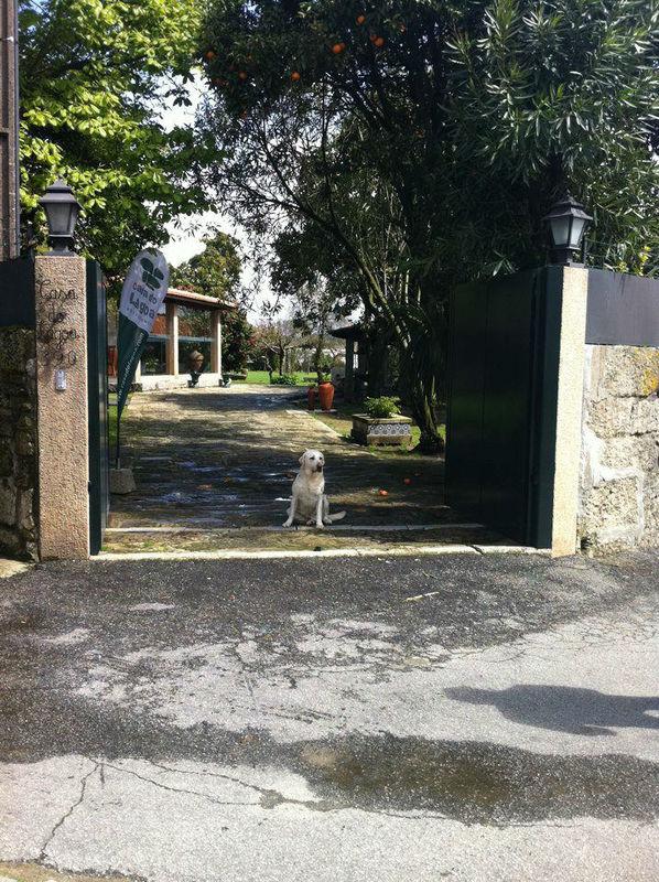 Foto: Casa do Lagoa