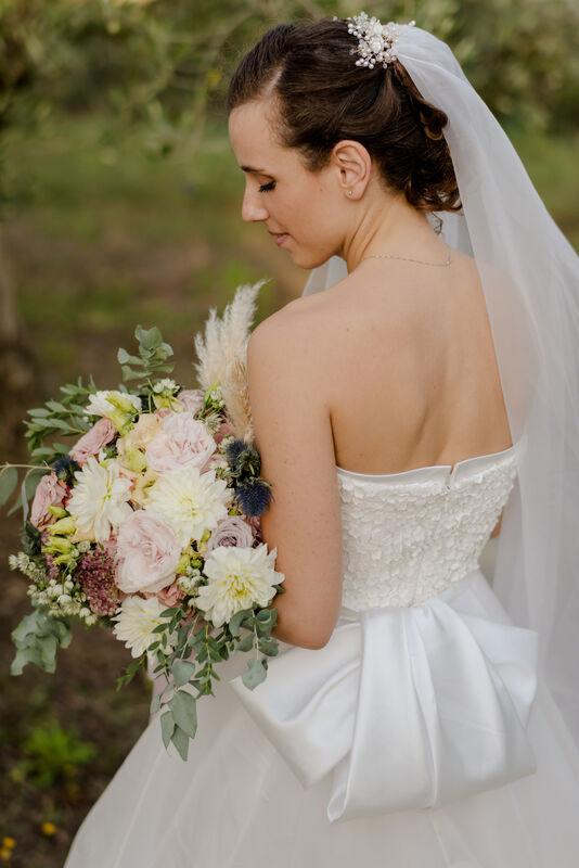 Camelia Spose