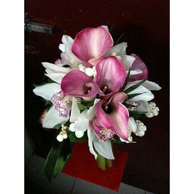 Flores Zinnia