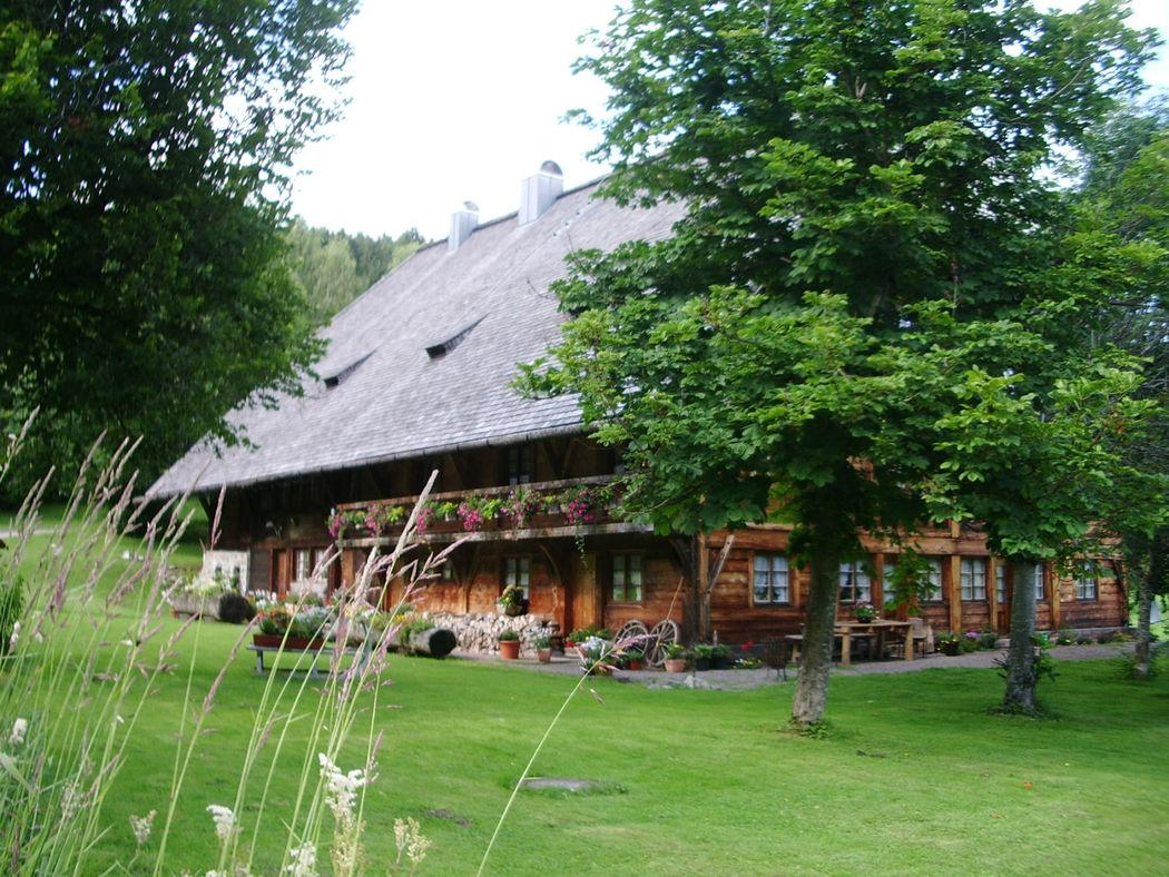 Henslerhof Vivien Alborna von Laufenberg