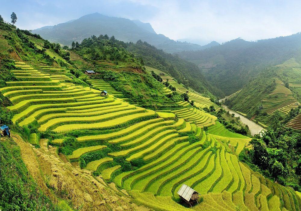 Explore Today Asia Viaggi
