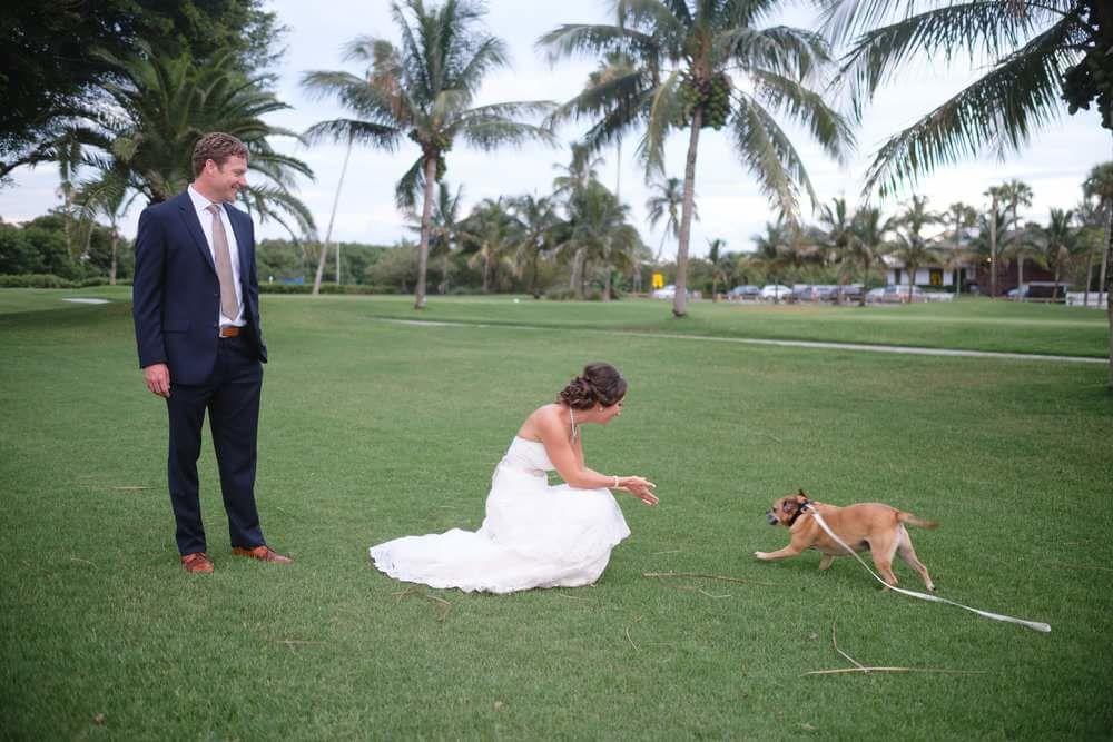 Pet of Honor - Wedding Pet Service