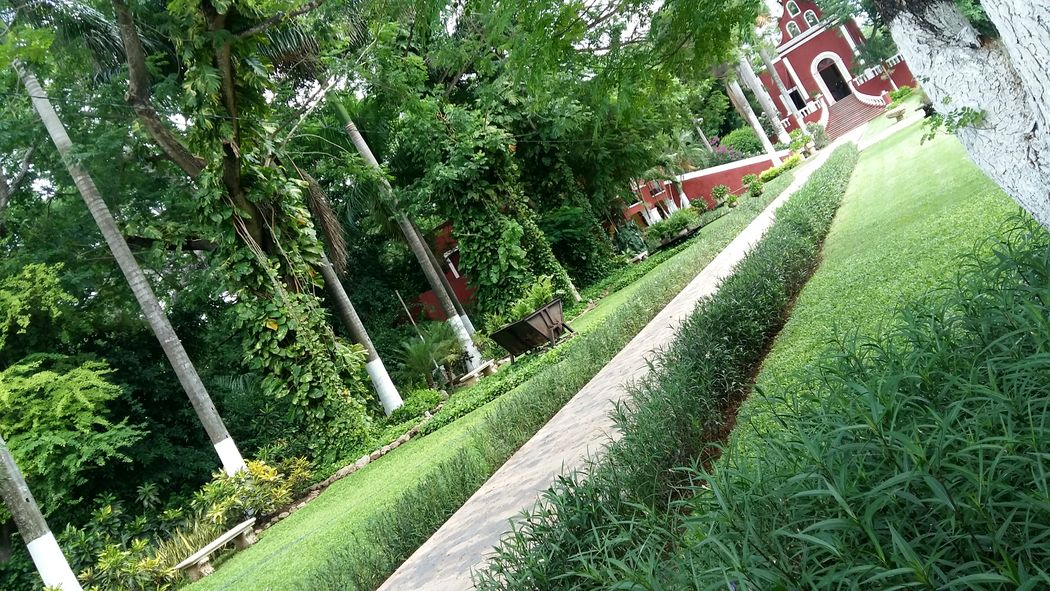 Parte del hermoso jardín de la Hacienda para sesiones fotográficas.