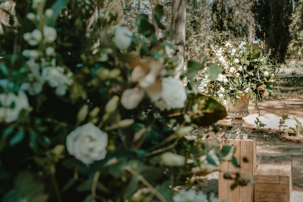 26 Moments weddings studio