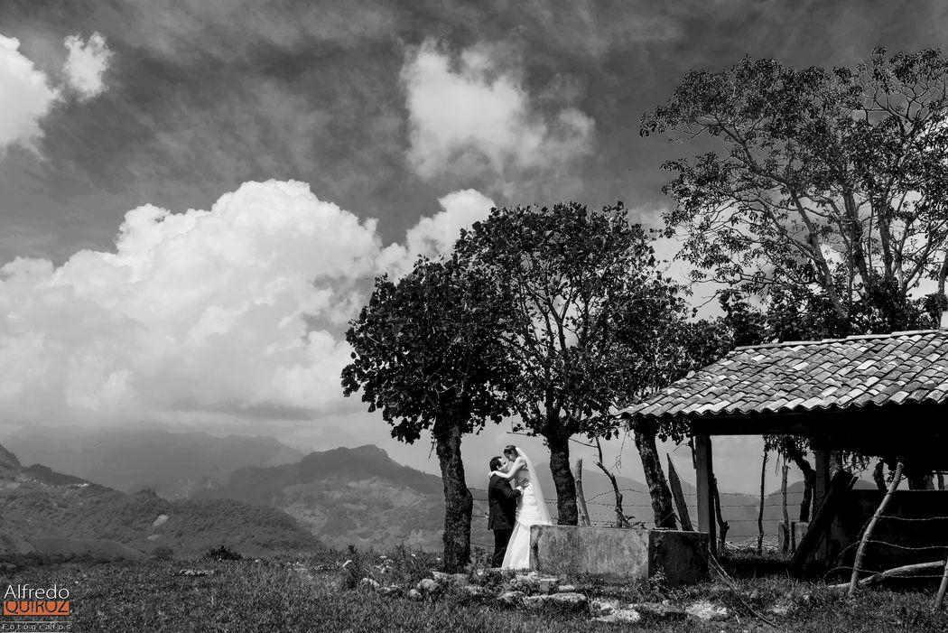Alfredo Quiroz Fotógrafos