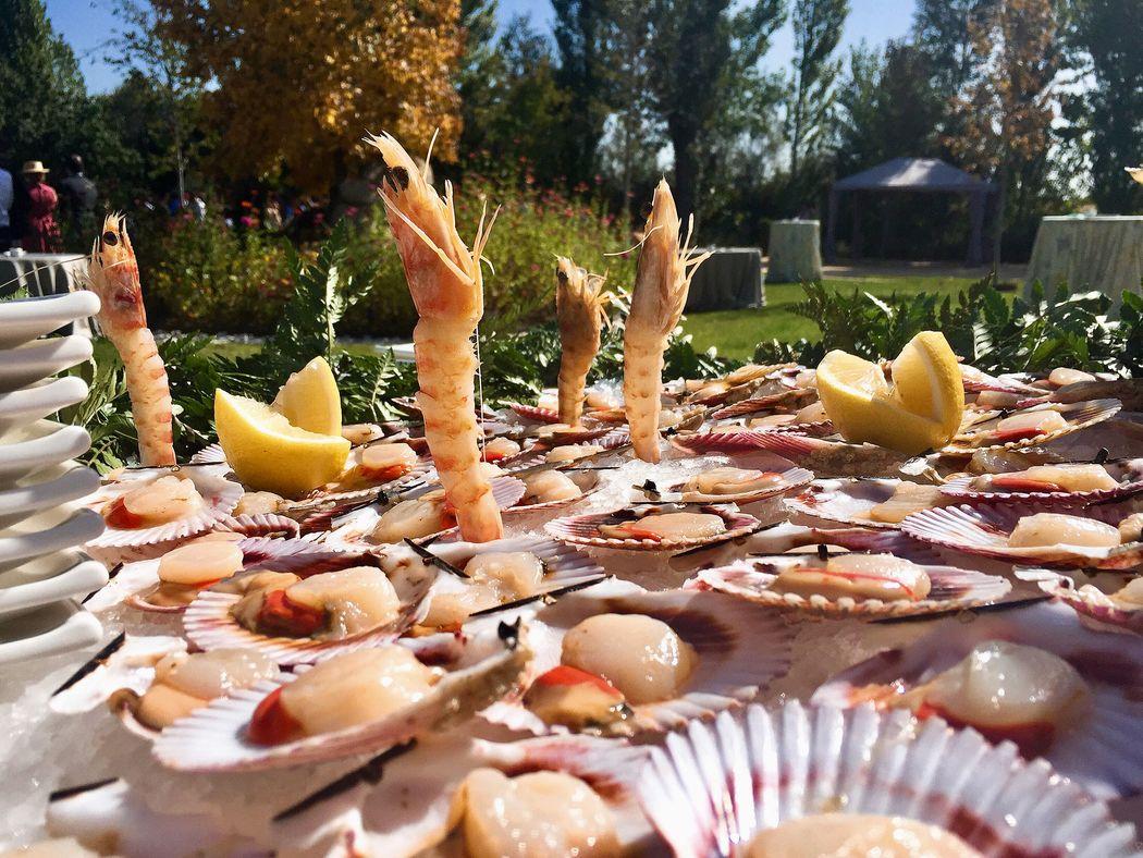 show cooking de marisco