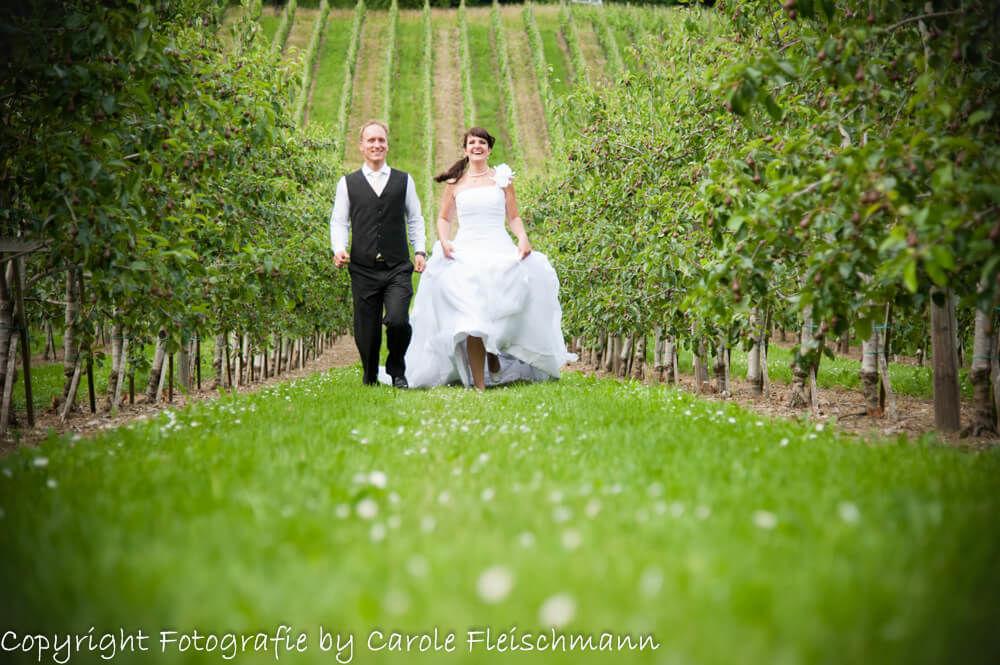 Beispiel:Und ab durch die grüne Wiese,Foto:Carole Fleischmann Fotografie