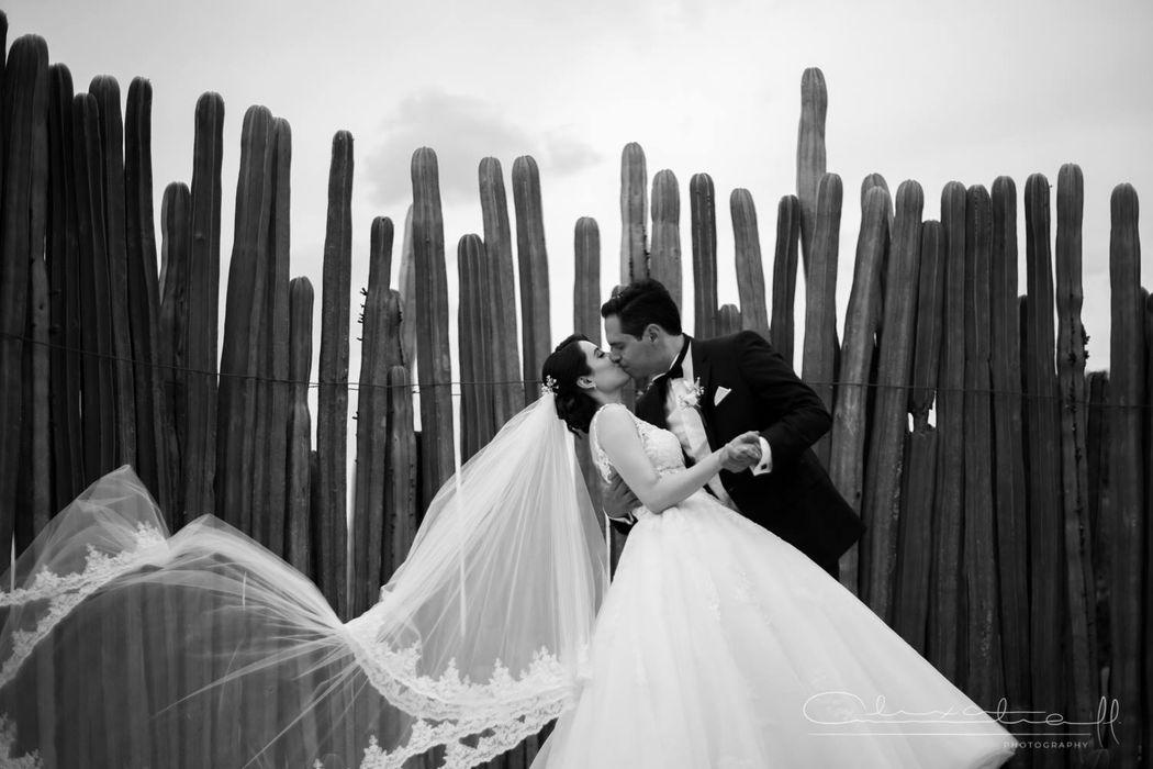 Antonoff Photography