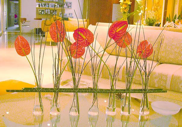 El Mundo de las Flores