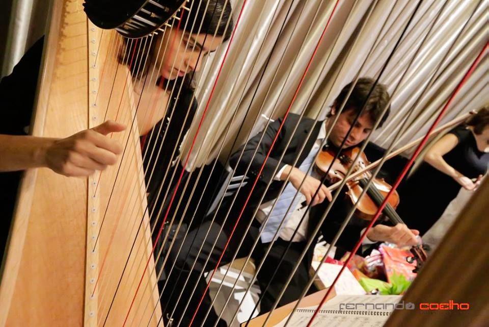 Harpa e Violino