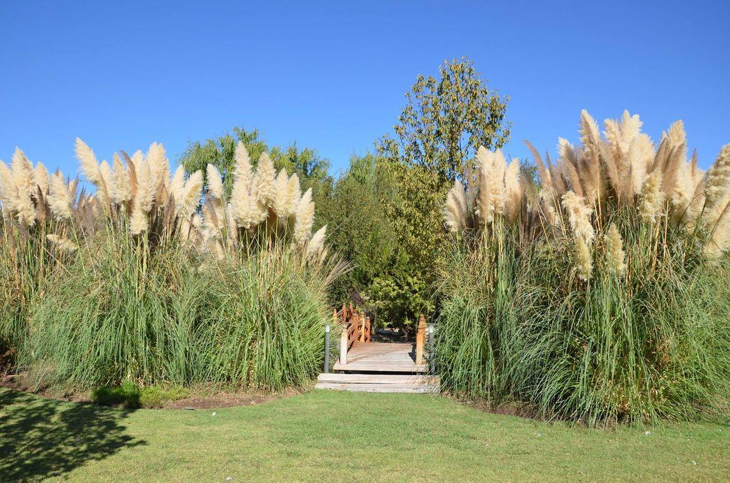 Hacienda Paidahuen