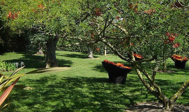 Quinta do Freixo