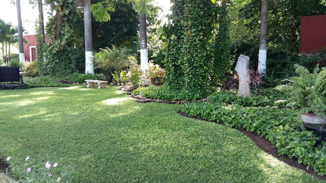 Jardín.
