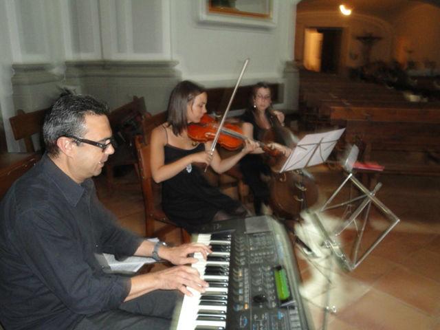 Somos músicos profesionales.