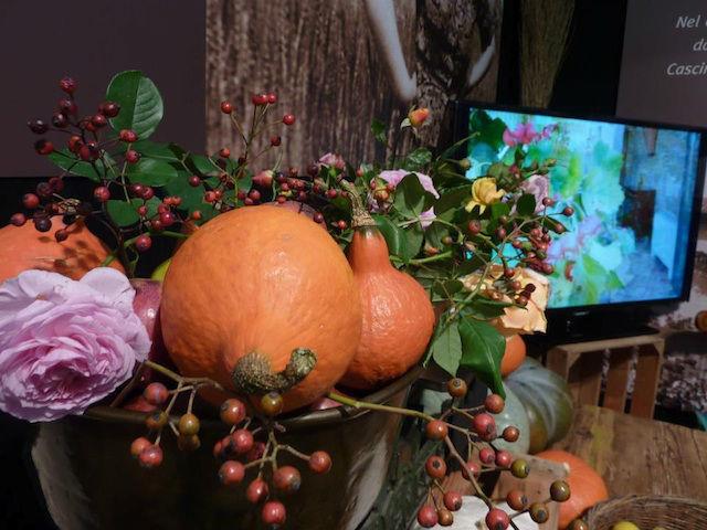 Cascina Alessi zucche, rose e bacche autunnali