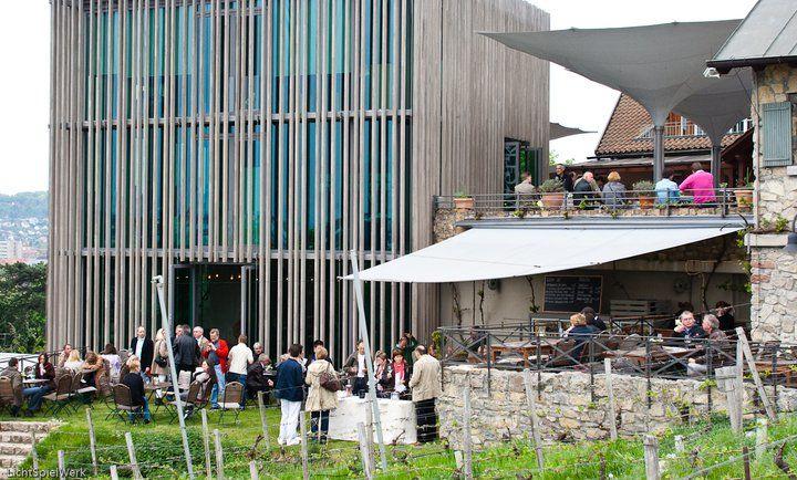 Beispiel: Gäste auf dem Gut, Foto: Weingut am Stein.