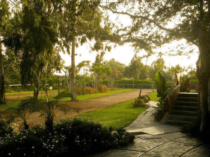 ENCUENTROS NATURALES ENMAMACONA