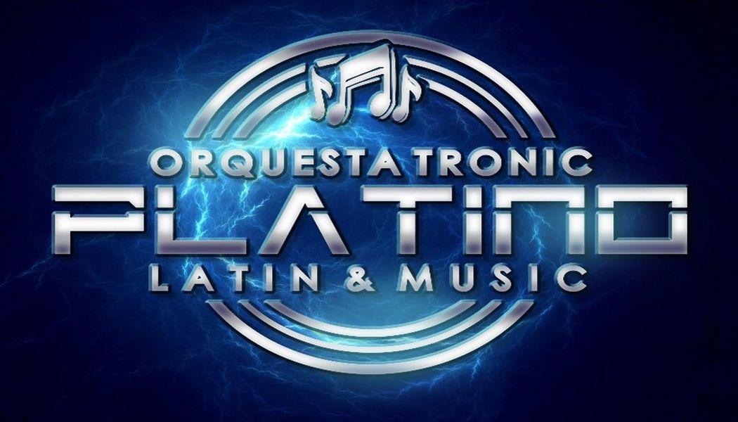 Logo PLATINO L&M