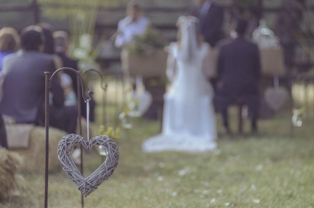 The Wedding Planner Company
