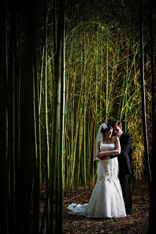 un bosque encantado, para la Princesa y su principe