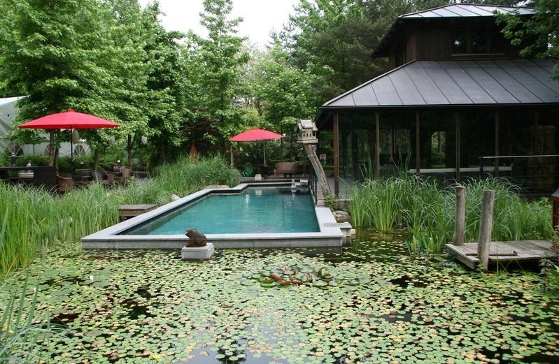 Beispiel: Pool, Foto: Traumgarten Thalwil.