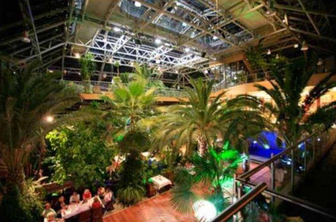 Palmiarnia Zielonogórska