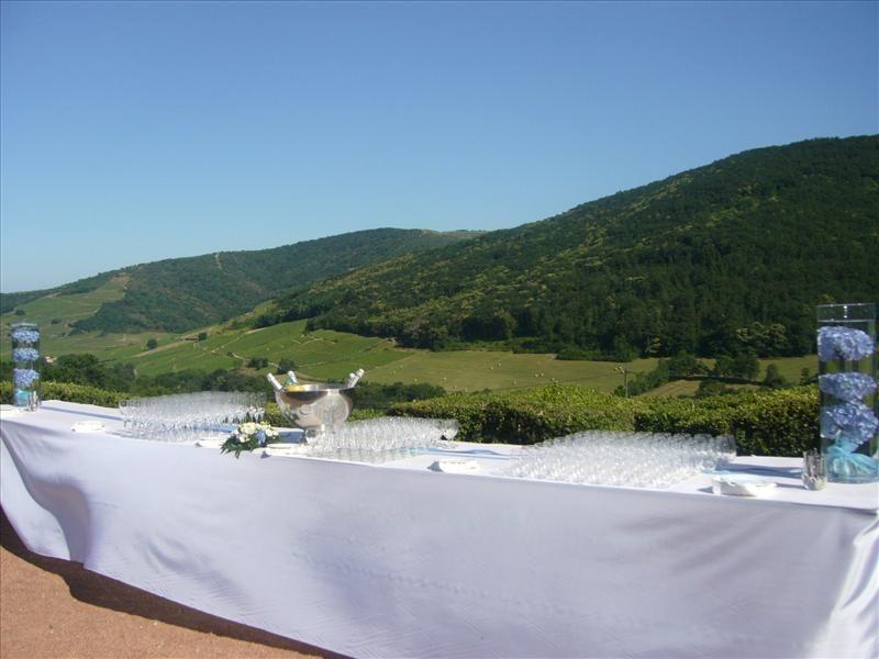Le château de Varennes, terrasse