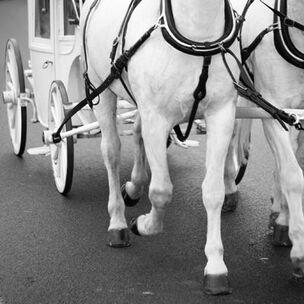 Beispiel: Transport des Brautpaares, Foto: Berlin und Hochzeit.