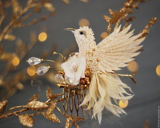 Fly Fenix by Julia Gorina