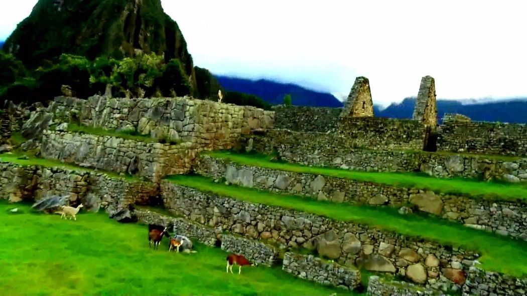 Fertur Perú Travel