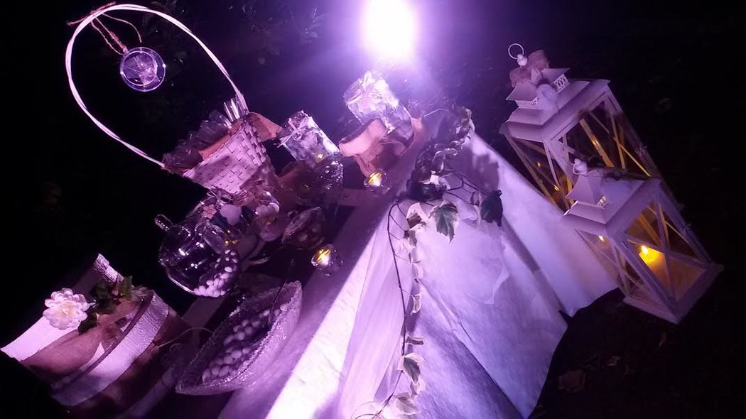 Wedding & Party Planner Sara Porro