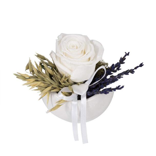 Bomboniere con Rose Stabilizzate Aluisi