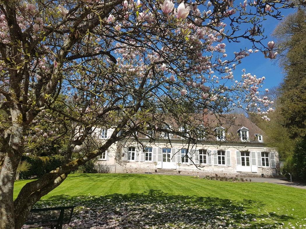 Château de Naours