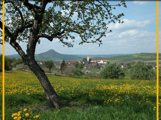 Beispiel: Garten mit Landschaftsblick, Foto: Schloss Weiterdingen.