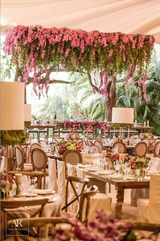 Alma Regalado Weddings