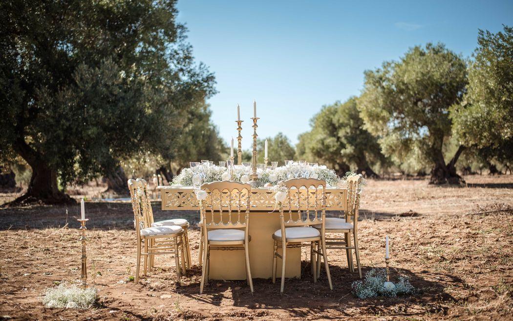 Allestimento romantico tra gli ulivi secolari della Valle d'Itria.