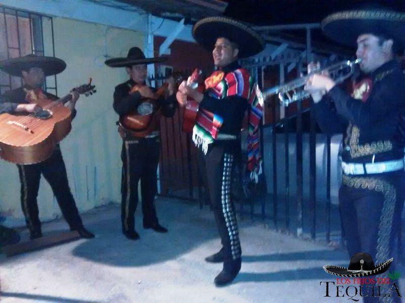 Los hijos del tequila