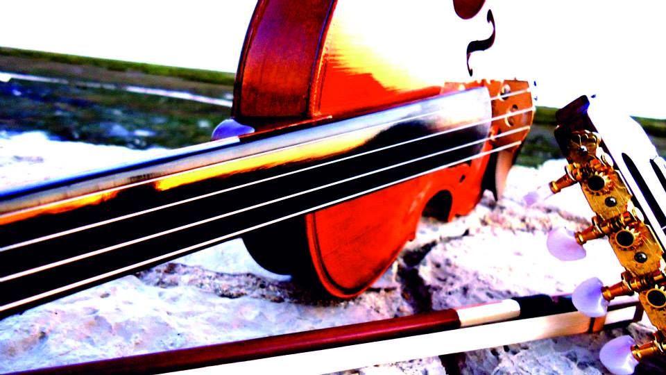 Violim Project Solo Music