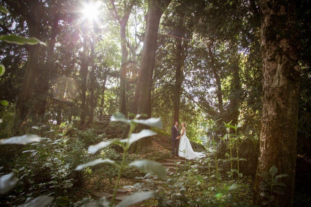 Celeste Studio - creative photographers