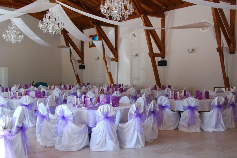 Fée de l'effet - Décoration de Mariage Thème violet (Organza)