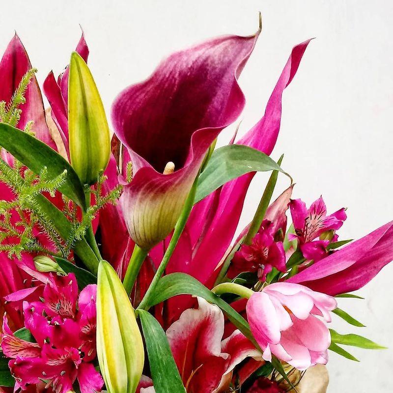Flor in Cena